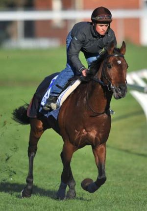 Poetry in motion .. all eyes will be on the French-trained champion, Dunaden, in today's race, which Craig Williams is ...