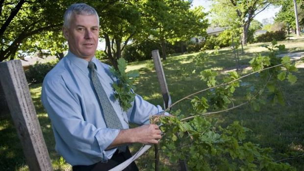 Michael Brice from TAMS is frustrated with the amount of trees being stolen and vandalised across Canberra.
