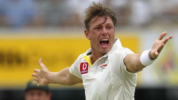 Shortfall … James Pattinson at the Gabba.