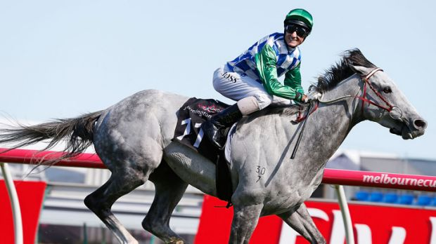 Cup bound: Jockey Glen Boss is all smiles as Puissance de Lune wins at Flemington.