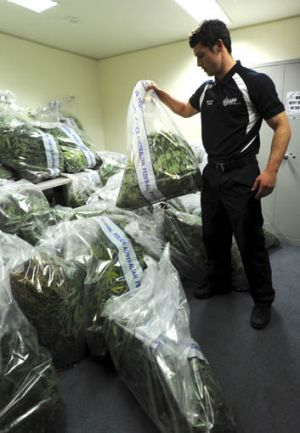 AFP officer Cade DeLepervanche stacks the bags of plants.