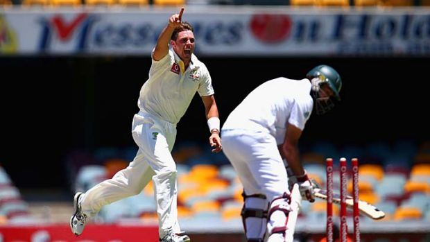 The dismissal that wasn't … James Pattinson's celebration of Hashim Amla's scalp was premature.