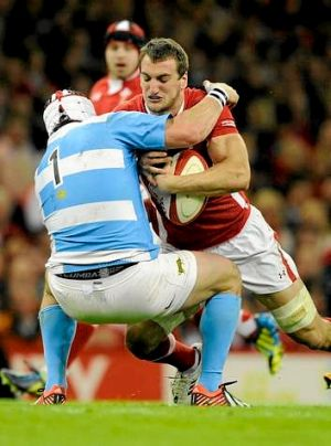 Benched ... Wales captain Sam Warburton.