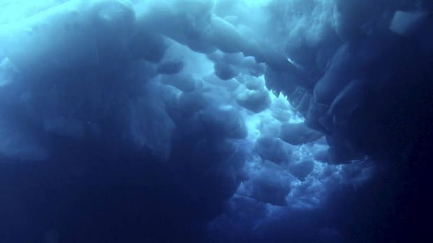 Frozen world ... vision from beneath the Southern Ocean.