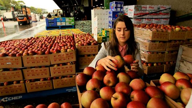 Turning back the clock … Sally Hill wants urban dwellers to to think carefully about how food is produced and ...