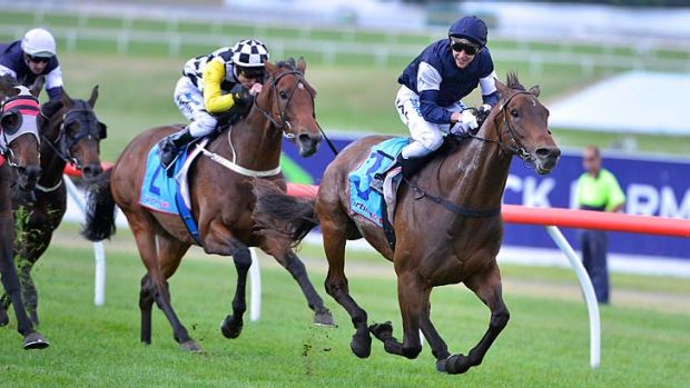 Second choice: Tanby upstages the stable favourite, Mourayan, unplaced in the Zipping Classic.