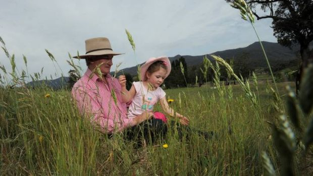 Tidbinbilla Station owner Michael Shanahan and his four-year-old daughter Tess among the long grass on the property.