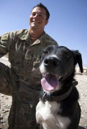 Fetching … handler Lance-Corporal Nathan Cooper and his trusty companion, Wilber.