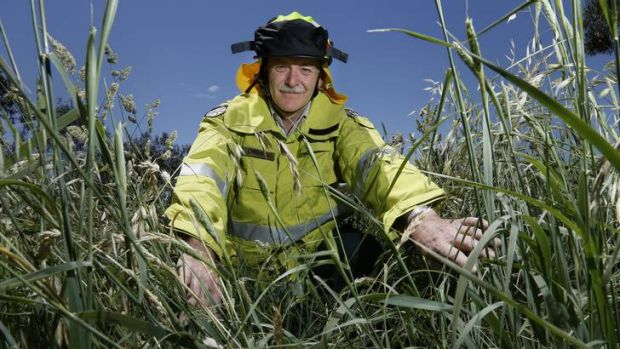 ACT Parks and City Services trainer officer Rick Davies is heading to Botswana to help train the country's fire fighters.
