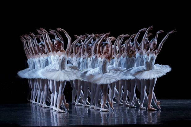 Artists of The Australian Ballet in Swan Lake.