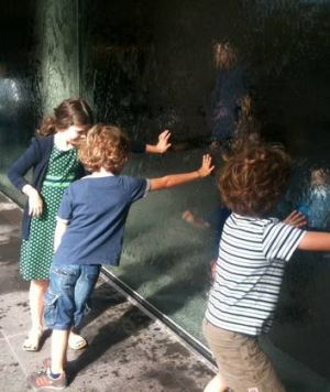 Mark Healy's children touch the NGV's waterwall.