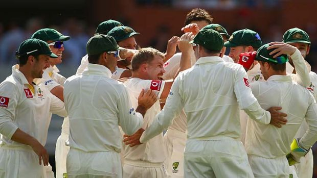The Australian team congratulate David Warner and Matthew Wade after they combined to take the wicket of Hashim Amla.