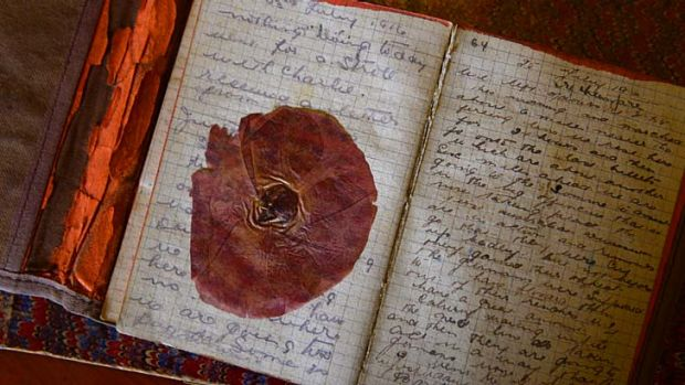 The pressed poppy in George McClintock's diary.