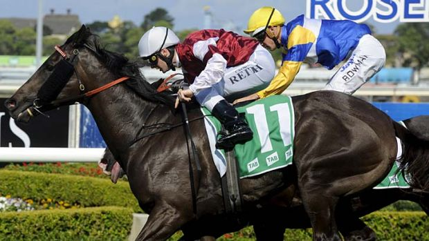 Winning double … Classics, with Christian Reith on board, edges out Tromso to make it two wins for trainer Peter ...