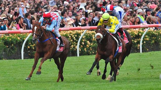 Dunaden (right) with Mikel Delzangles in the saddle after winning the 2011 Melbourne Cup.