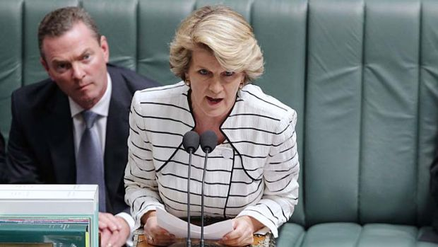 Julie Bishop ... on the defensive.