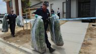 AFP raid on a drug growing house in Forde.