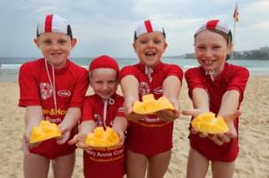 North Bondi Nippers celebrate the start of summer with mangoes.