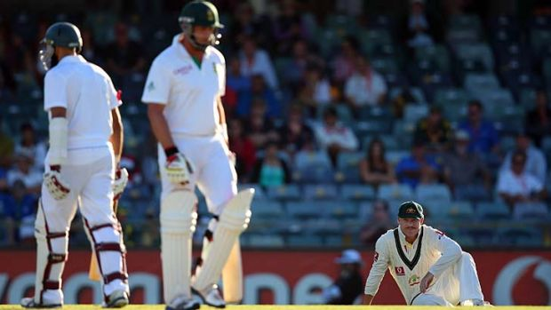 Dominant ... David Warner sits down after another boundary as South Africa pile on the runs on the second day of the ...