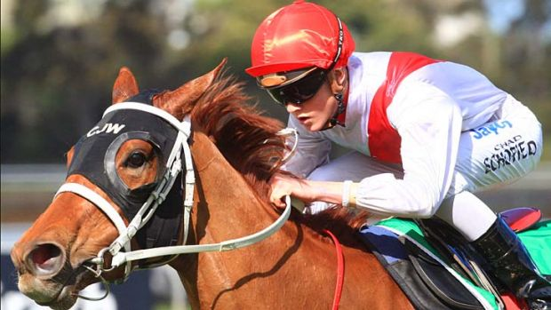 Going places … apprentice Chad Schofield rides Nocturnelle to victory at Rosehill, above, and in contemplative ...