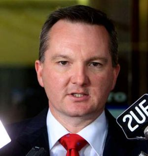 Immigration minister Chris Bowen.