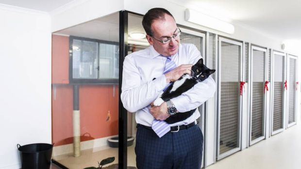 "RSPCA CEO Michael Linke, with Tickles the cat, inside the organisation's new cat boarding facility, ""Tango's Place""."