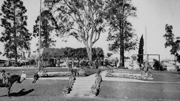 This photo from the Queensland State Library archives shows a set of steps, decorated with stone edgings, leading to the ...