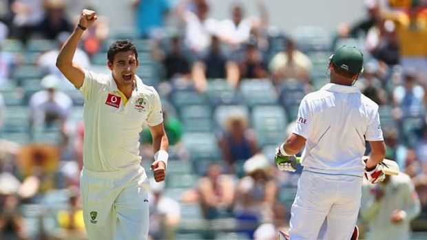 Fit and firing ... Young quick Mitchell Starc, shown here celebrating after dismissing South African Jacques Kallis, has ...
