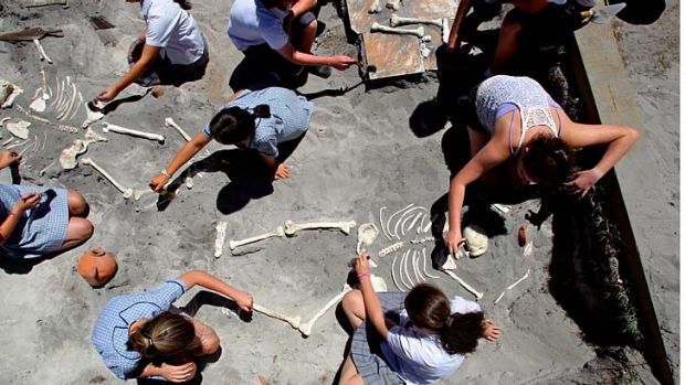 Brush with death … students excavate ''bones'' and artefacts in a replica Minoan temple.