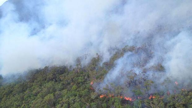 The fire races through North Stradbroke Island bushland.