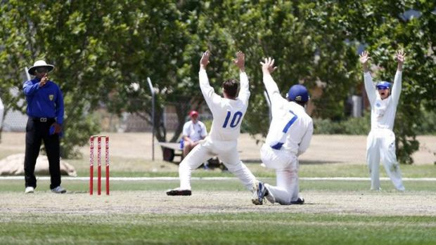 ACT Comets' Shane Devoy, Aaron Ayre and Josh Connolly celebrate after getting South Australia's Cullen Bailey out.
