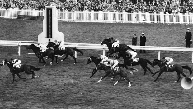 Golden years … it's difficult to imagine how a racehorse trainer would do well winning the odd minor race.
