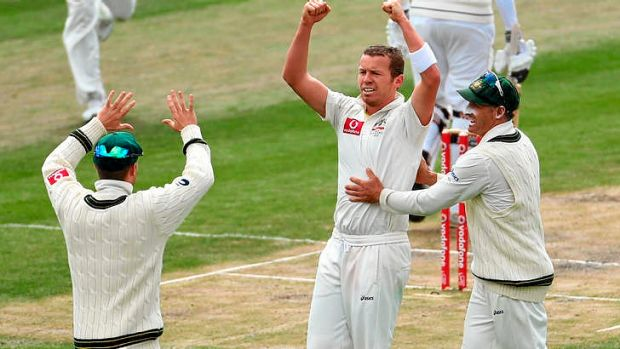 A wicket at last ... Peter Siddle celebrates taking the wicket of Angelo Mathews.