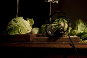 An image from <i>Berberian Sound Studio</i>.