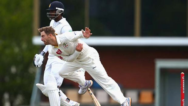 Cameo ... Matthew Wade removed his wicketkeeping gear to bowl an over before tea.