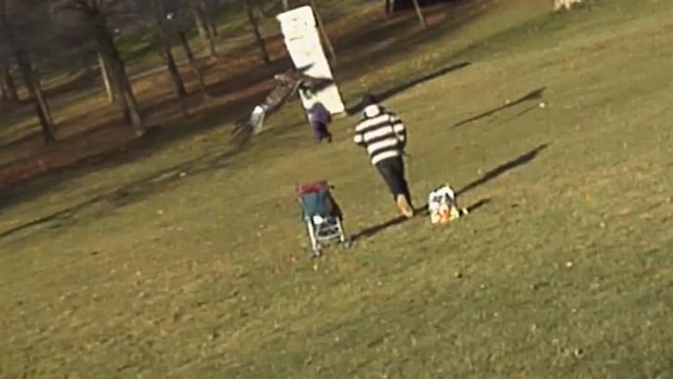 Flying out ... the hoax video shows the eagle dropping the child after carrying it a few metres