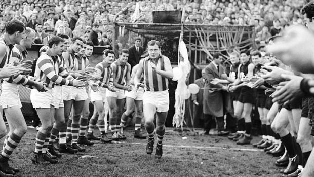 North Melbourne captain Allan Aylett runs on to the ground to play his 200th league game.