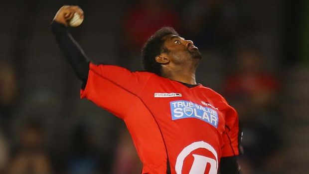 Paradox ... Murali Muralitharan is among the top BBL wicket-takers.