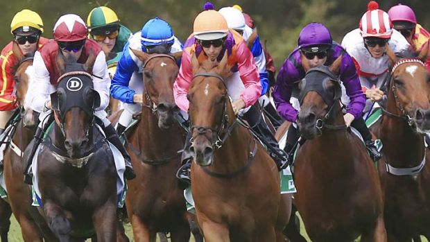 Good sign ... Adebisi (orange cap) gave trainer Desleigh Forster her first Sydney winner at Warwick Farm on Saturday.