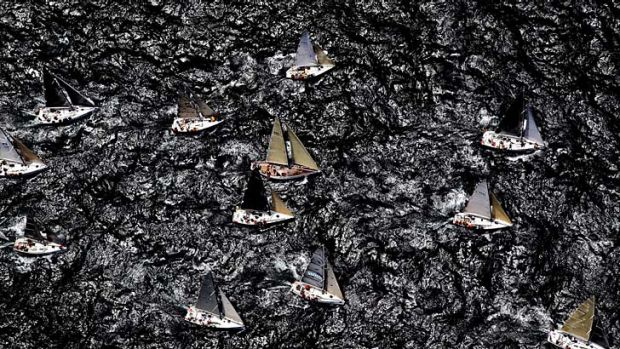 Paper cut … a reduced fleet of 76 yachts sailed out of Sydney Harbour.