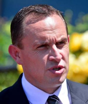 Silky touch ... trainer Chris Waller.