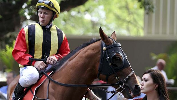 ''People in the industry have been very supportive'' … leading jockey Chris Munce.
