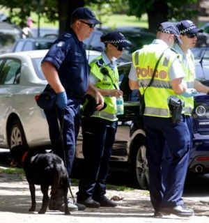 The police blitz in the CBD resulted in 39 drunk and 17 assault arrests.