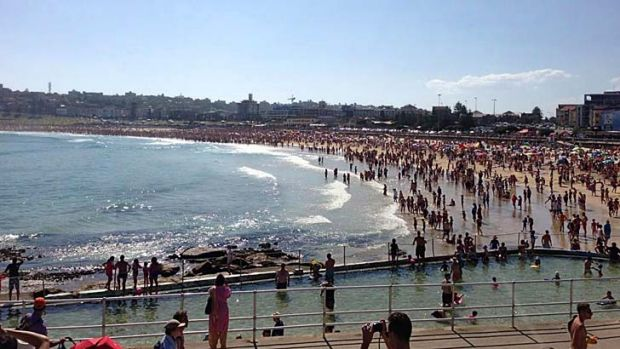 Everybody out ... Bondi Beach was even more crammed than usual on New Year's Day as swimmers fled the water after a ...