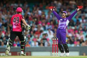 Tim Paine of the Hurricanes appeals during the Big Bash League match against the Sydney Sixers.