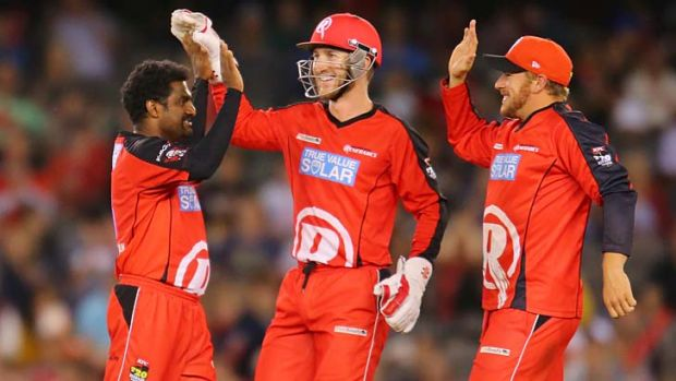 Muthiah Muralidaran celebrates with his teammates after dismissing Nathan Reardon of the Strikers.