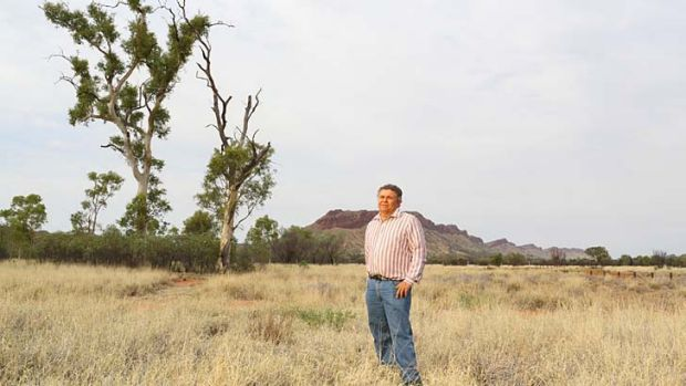 Hopes dashed … Malcolm Connelly and the Namatjira ghost gums, now burnt, which were thought to be dying until ...