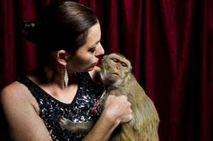 Stardust Circus' Wonona West with Millie, one of the monkeys involved in a car accident on Thursday last week.
