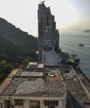 ''Horrific'' … shark fins drying in the sun on the roof of a factory building on Hong Kong Island.