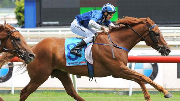 Neck of time: Michael Rodd urges Khalifa to the line for a long-neck win over Cornell at Caulfield on Saturday.